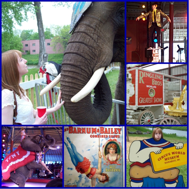 circus world collage