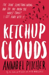 ketchup_clouds_pitcher_novel